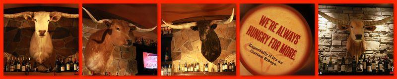 LonghornBull